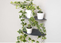 Floating plant shelf L36 cm - Alu - Set of 2